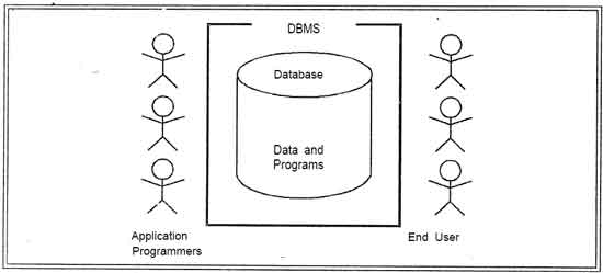 Introduction to dbms dbms tutorialink database environment ccuart Choice Image